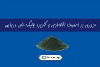 مروری بر اهمیت اقتصادی و کاربردهای جلبکهای دریایی